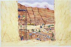 Dig Site